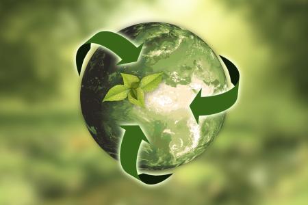 nachhaltigkeit_nature-3294632_1920.png